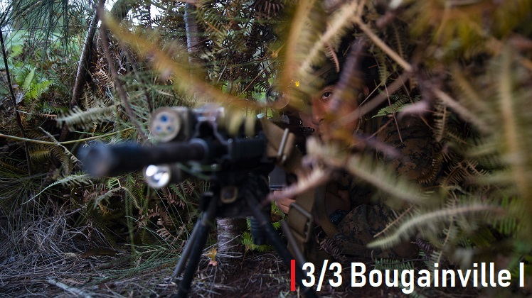 3/3 Conducts Bougainville I